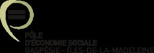 logo PSE_GiM
